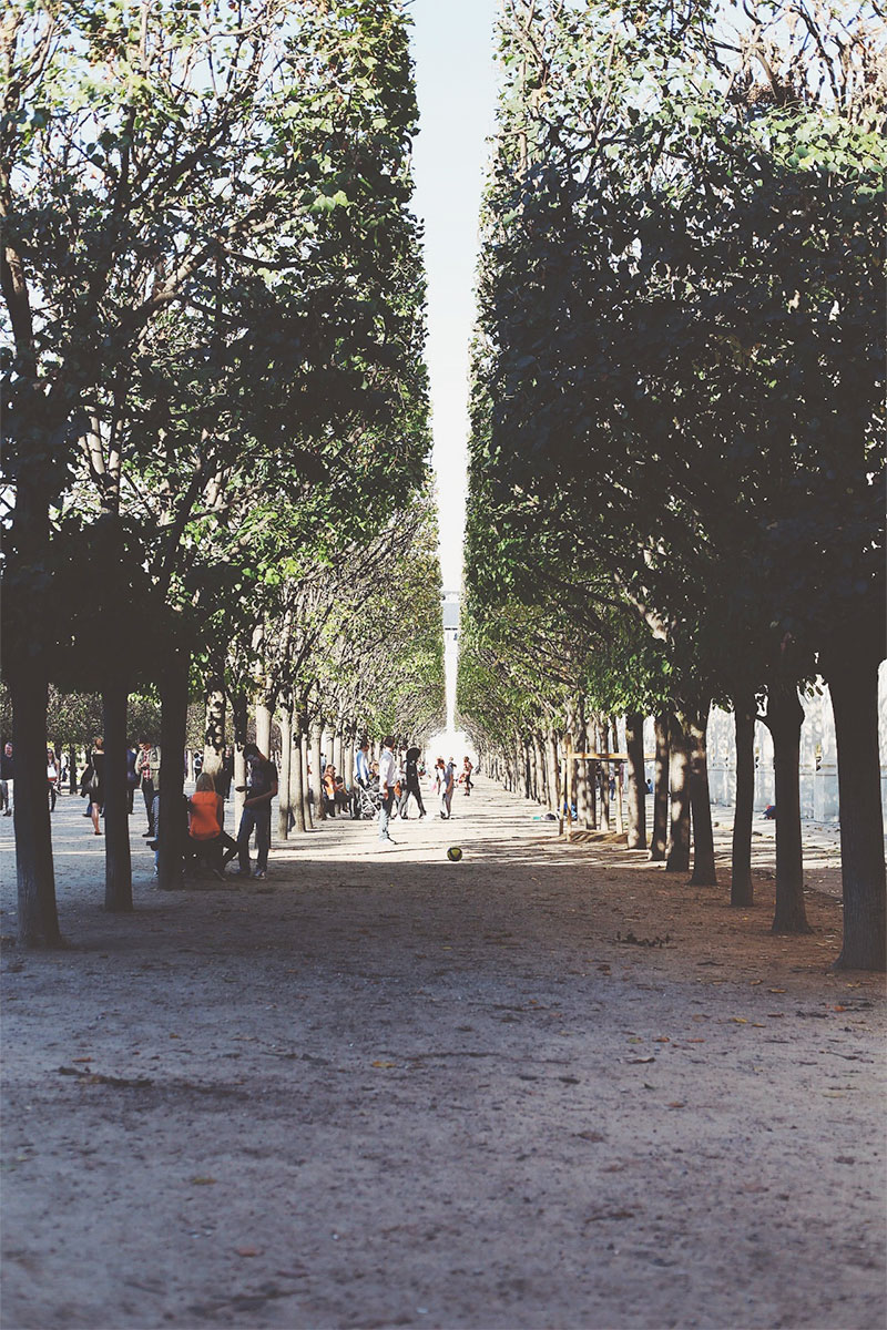Le Palais Royal photography by Emily Robson