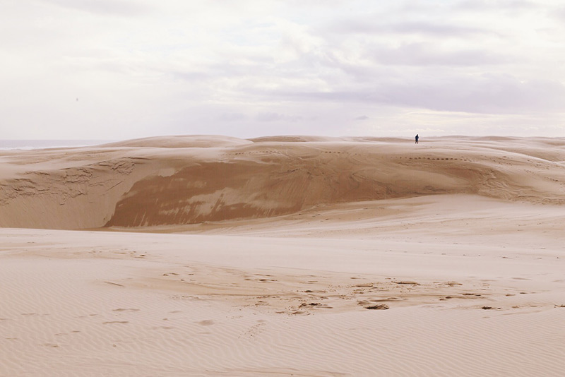 We Are Wild Stockton sand dunes